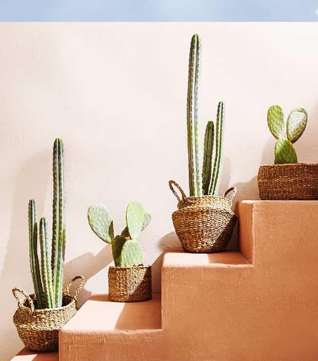 Decora tu casa con fibras vegetales y refresca tus espacios 7