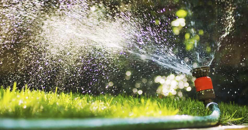 Cómo ahorrar agua en casa y en el jardín este verano 4