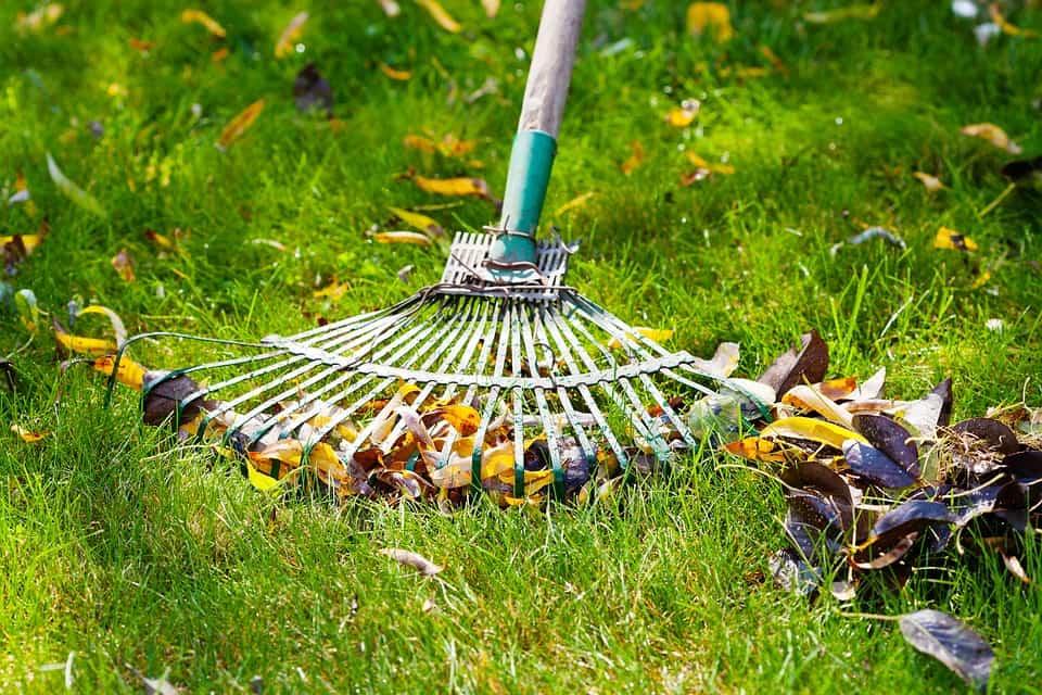 Maquinaria necesaria para un mejor cuidado de nuestro jardín 1
