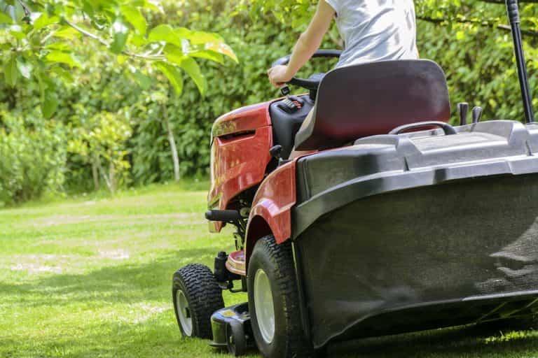 Maquinaria necesaria para un mejor cuidado de nuestro jardín