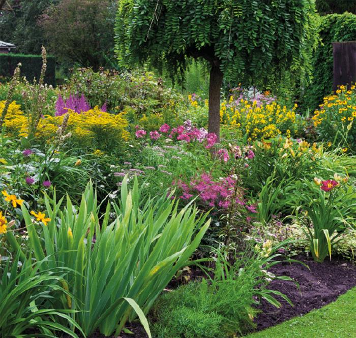 Cómo cuidar tu jardín en verano: ideas y consejos 2