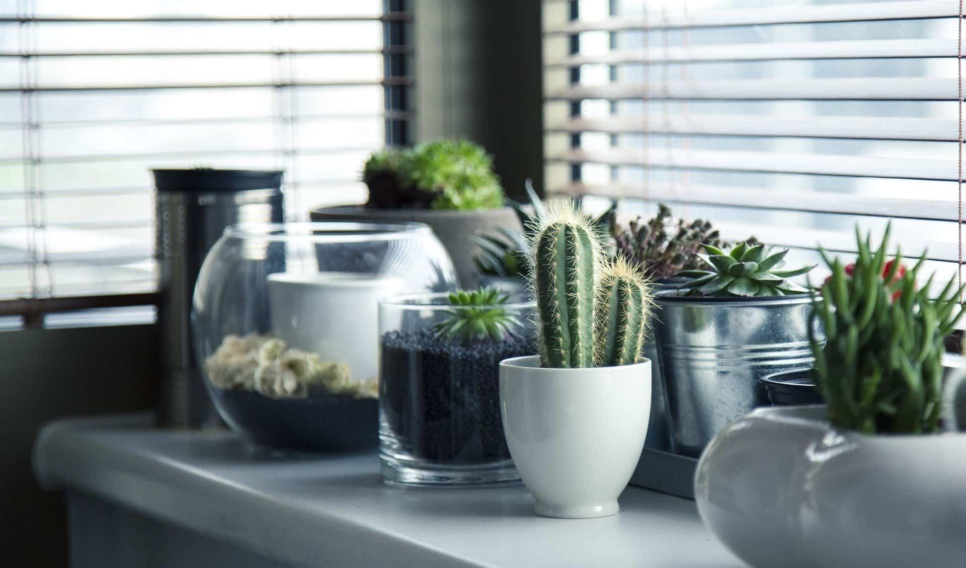 decorar y transformar tu casa