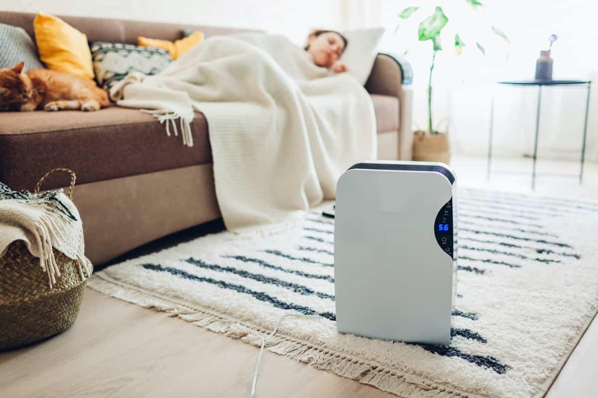 Humidificadores en tu hogar: todo lo que debes saber