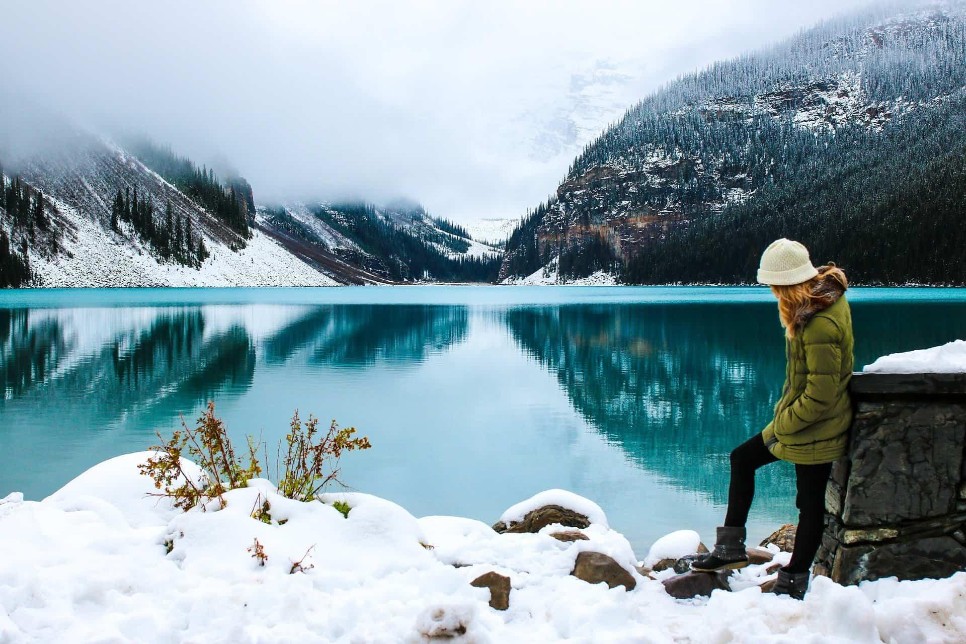 Cómo recuperar las plantas que han sufrido por el temporal de nieve de Filomena