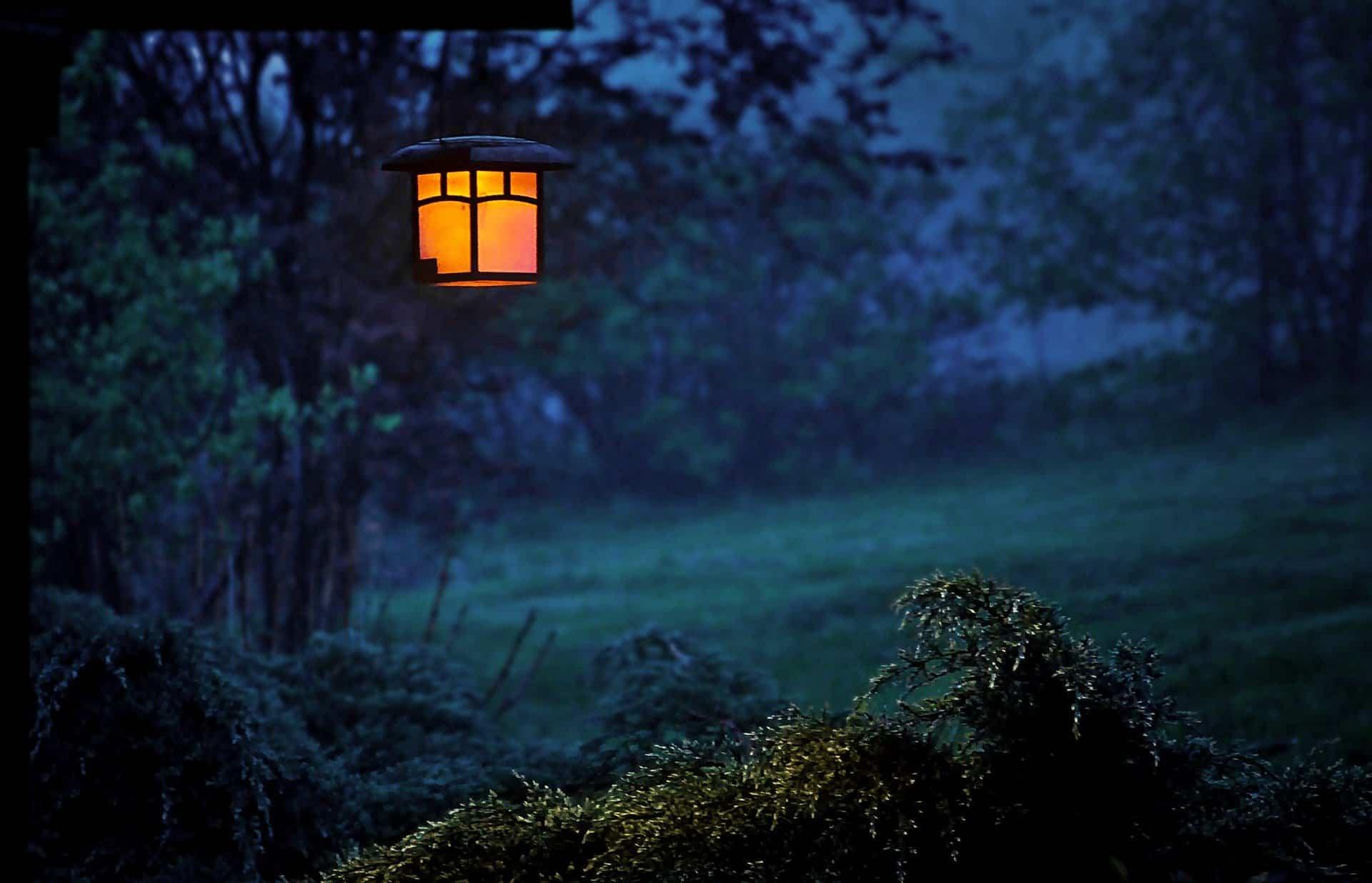 iluminacion jardin