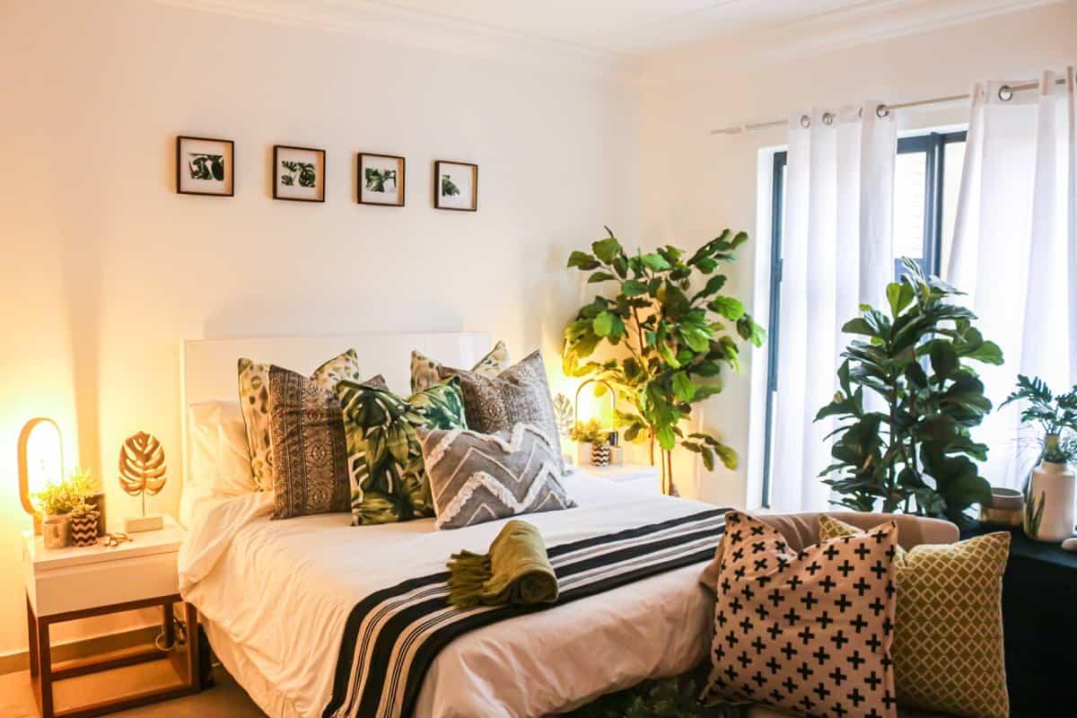 plantas para el dormitorio